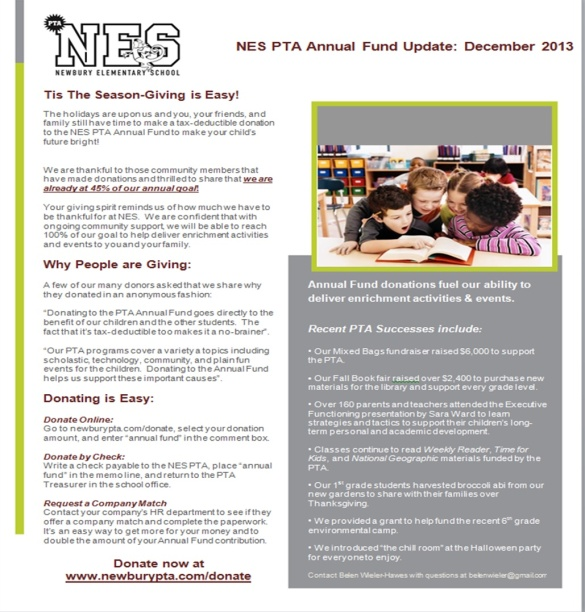 nes dec annual fund